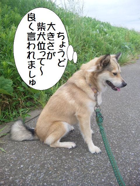 100817_2.jpg