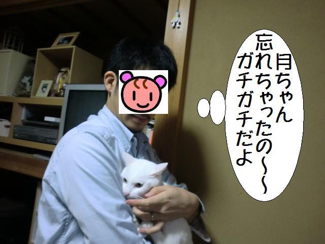 101105_2.jpg