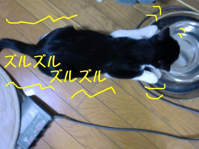 101214_1.jpg