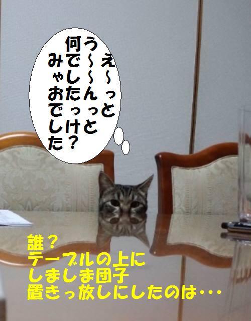 110220_1807_01.jpg