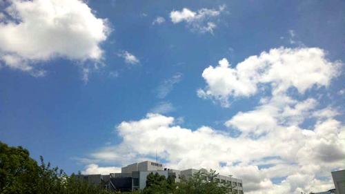 夏の空at千葉