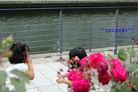 2012_05_22_0224_1.jpg