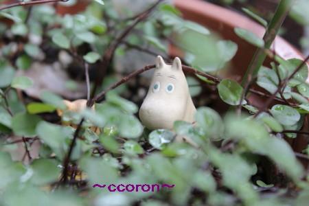 2012_07_01_0287_1.jpg