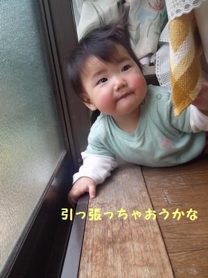 実家⑤ 4