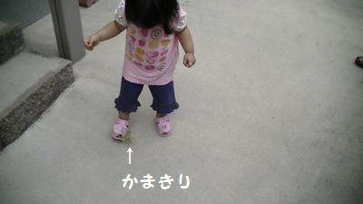 140904かまきり①