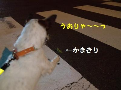 201409270012247dc.jpg