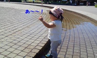 20140914庄内緑地公園②