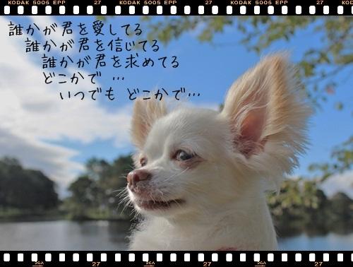 IMG_5009558.jpg