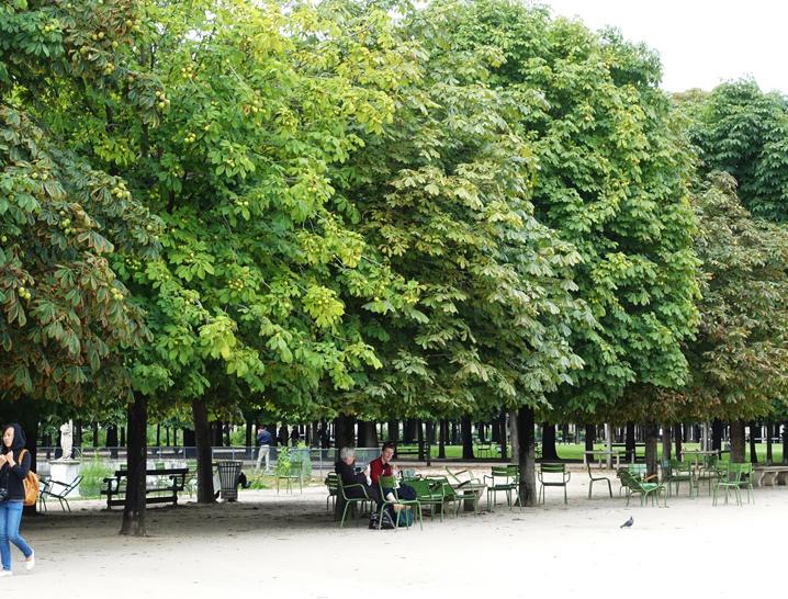 チュイルリー公園-244-1