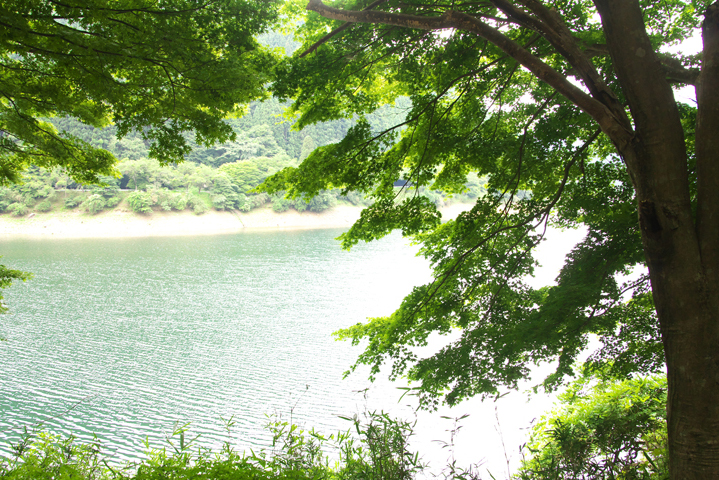 銀山湖-973-1