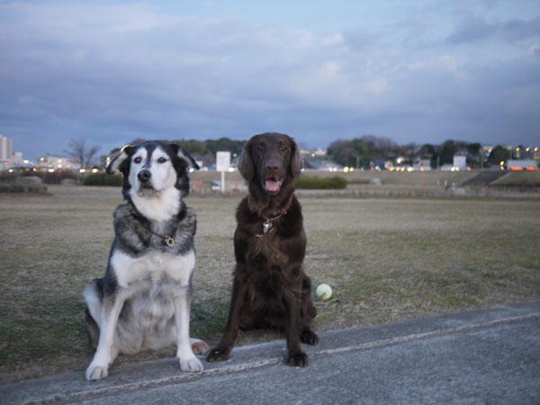 20110113お散歩7