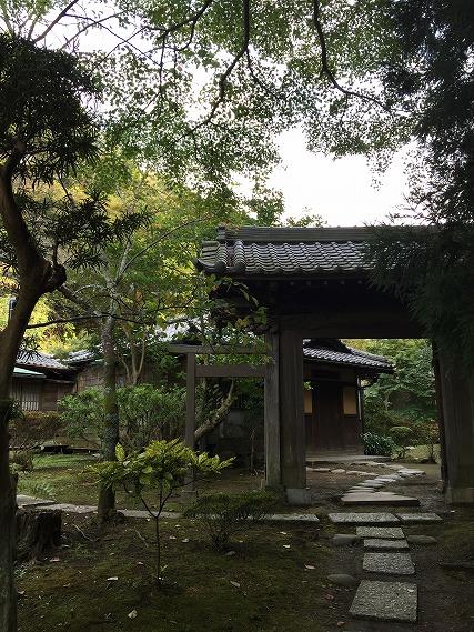 ゆうブログケロブログ鎌倉ハイク (84)