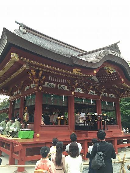 ゆうブログケロブログ鎌倉ハイク (111)