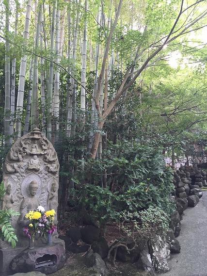 ゆうブログケロブログ鎌倉ハイク (40)
