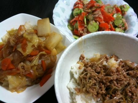 人参と胡瓜のツナサラダ・もやしとひき肉餡丼・野菜たっぷりウィンナーのポトフ