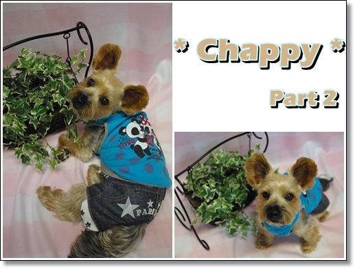 chappy2.jpg