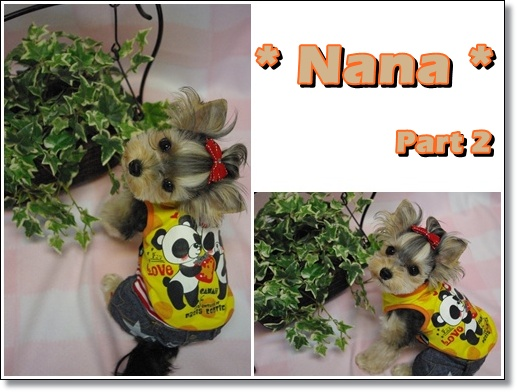 nana2.jpg