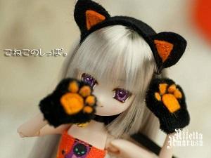 銀髪黒猫姫。