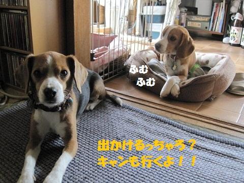 004_20110528175727.jpg
