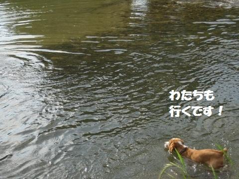 023_20110630084809.jpg