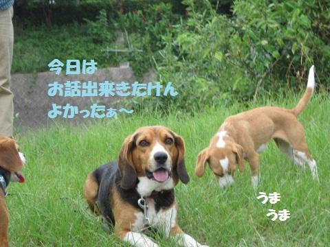030_20110801072130.jpg