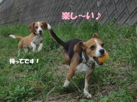 053_20110523093801.jpg