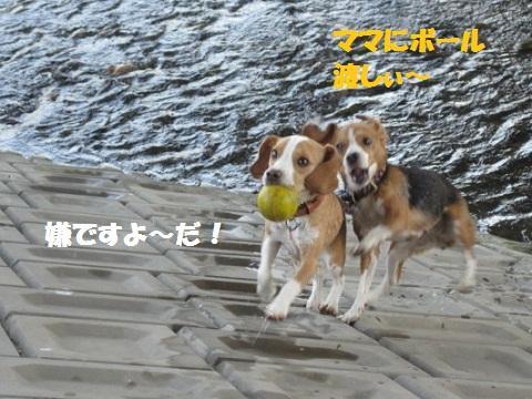076_20110721085644.jpg
