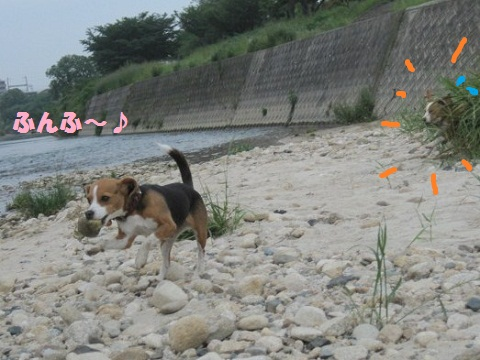 100_20110604071818.jpg