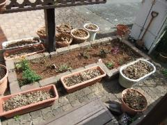 2009_0716blog0004.jpg