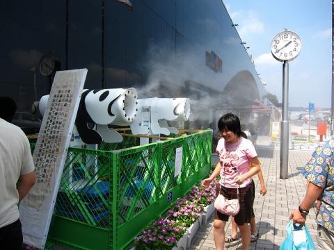 Fuji_082.jpg