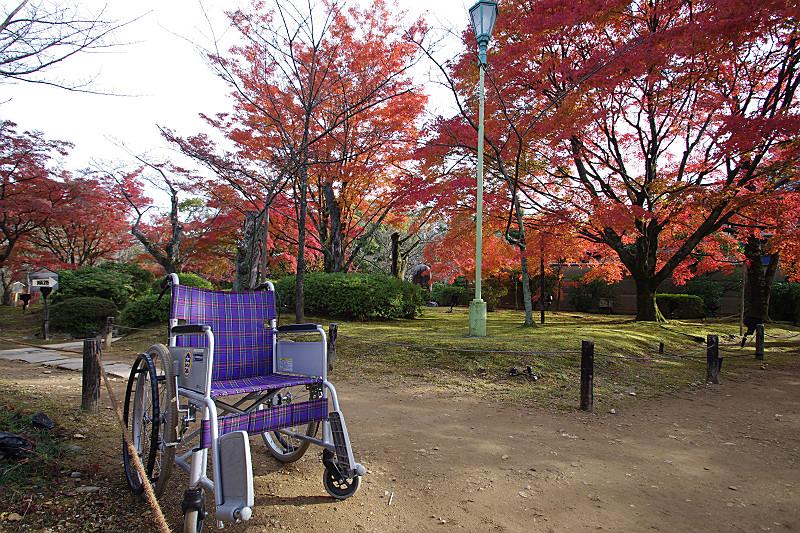 車椅子で巡りましょう