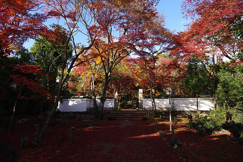 山門前の紅葉風景