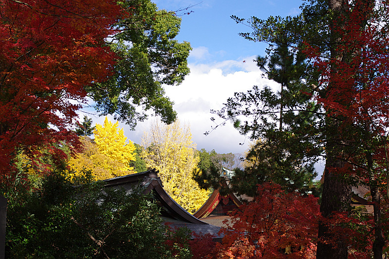 天神さんの大屋根と紅葉