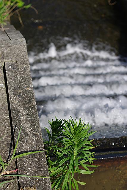 水しぶきの用水路