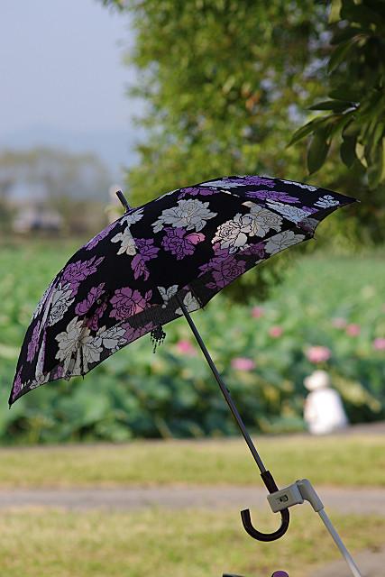 日傘を差して