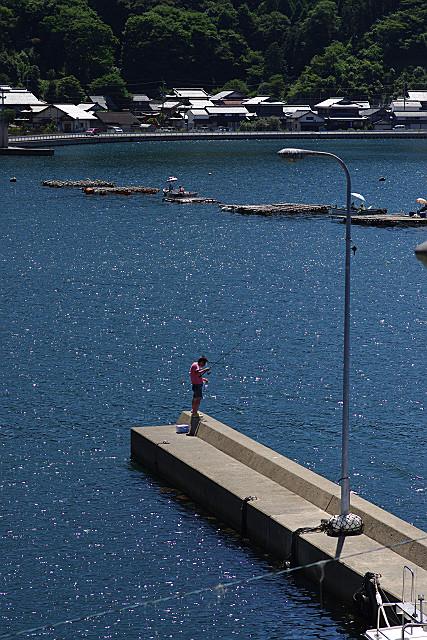 舞鶴湾の釣り人