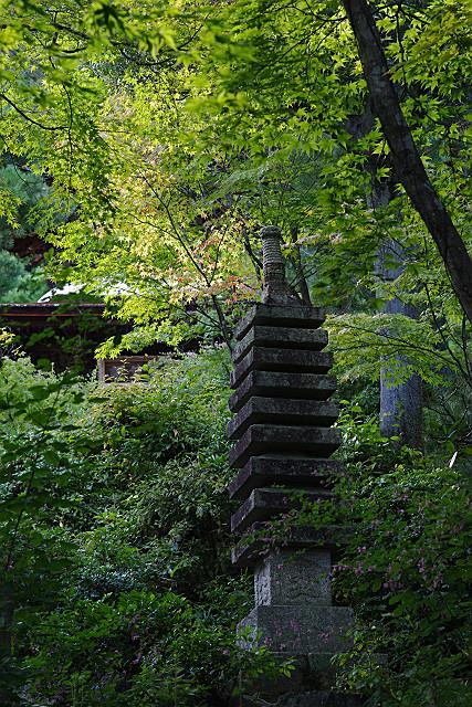 結構な山寺です