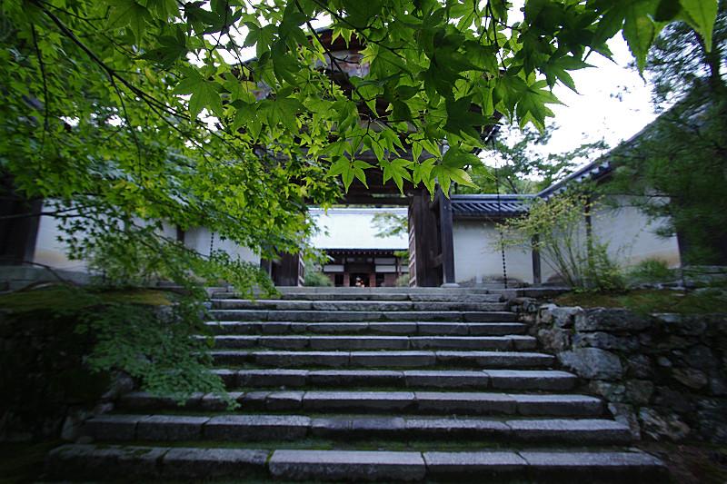二尊院の入り口
