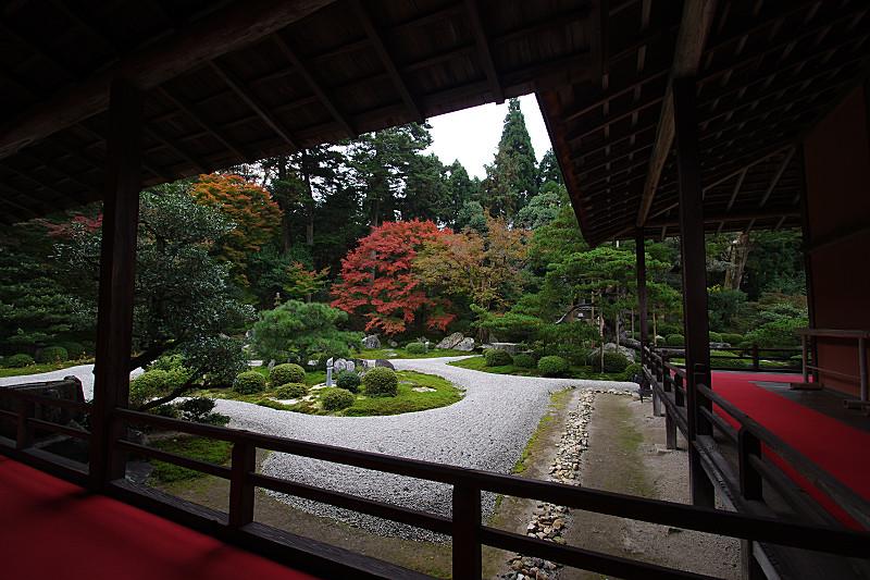 曼珠院のお庭