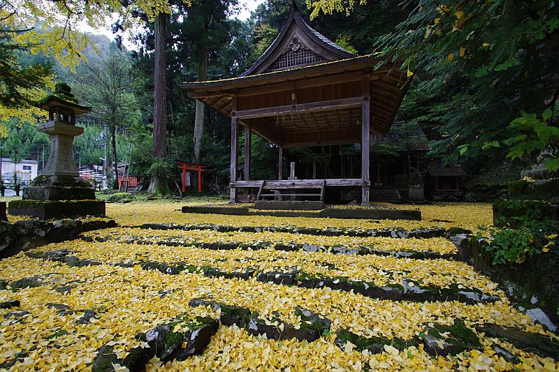 黄色が拝殿を囲む