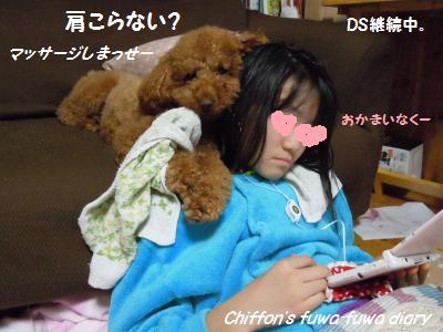 DSCN5266_convert_20131130222502.jpg