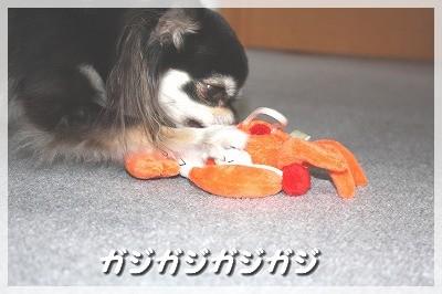 blog_import_4c8f617298ad4.jpg