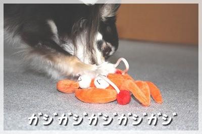 blog_import_4c8f6173745bc.jpg