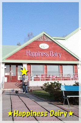 Happiness Dairy