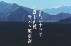 昭和23年富士山ろくの樹海にて