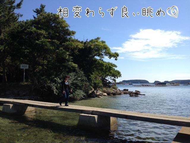 IMG_7800zzzzz.jpg