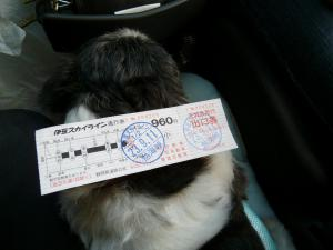 ちびもえ2011.09伊豆 028