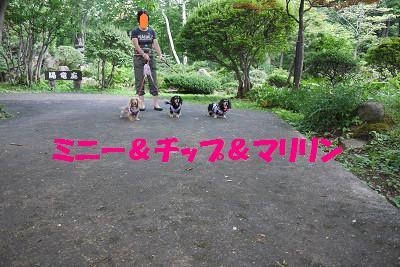 resize5571.jpg