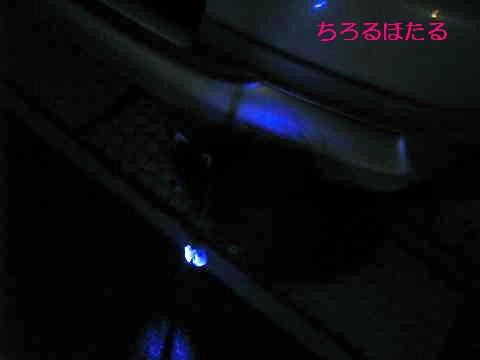 IMG_6818_convert_20110702075600_sh02.jpg