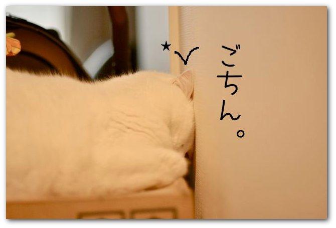 DSC_0001.jpg
